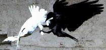 ΕΞΑΝΑΓΚΑΣΜΟΣ  σε «ΣΥΝΑΙΝΕΣΗ» Νόμιμου (;) ΥΠΟΒΙΒΑΣΜΟΥ…