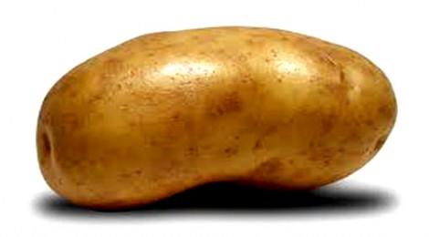Χοντρή πατάτα με τους «Διαθέσιμους» που επιστρέφουν