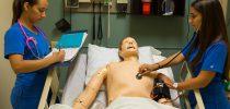 Μεταλυκειακό έτος − τάξη μαθητείας στα ΕΠΑ.Λ. φάση Δ΄ ο μεγάλος ασθενής